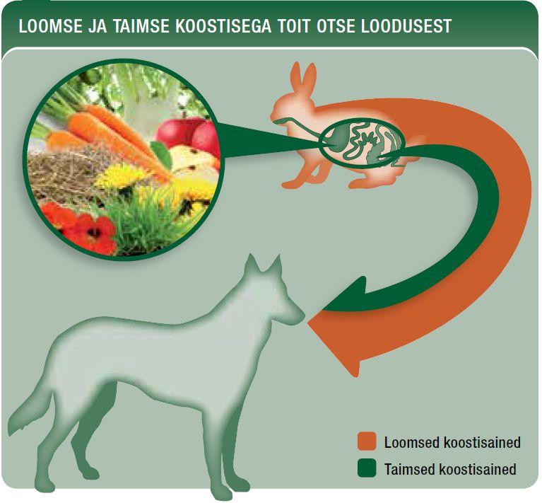 Loomse ja taimse koostisega Platinum koeratoit