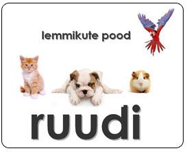 Platinum koeratoit Ruudi lemmikloomapood